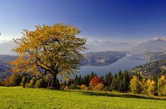 Herbst am Millstätter See in #Kärnten #Kaernten (c) Kärnten Werbung - Franz Gerdl Autumn Scenery, Bergen, Austria, Golf Courses, Places To Visit, Around The Worlds, Country Roads, Explore, Mountains