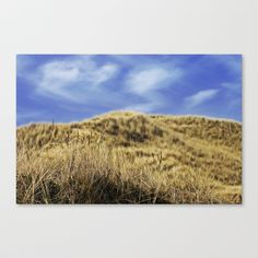 Dune landscape Stretched Canvas by AD DESIGN Photo + PhotoArt - $85.00