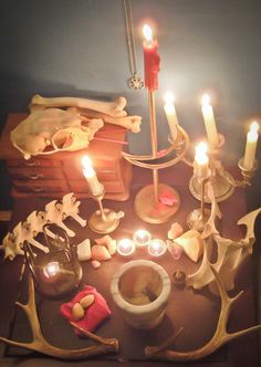 Pagan Altar--Some pagans are oriented toward crystal practice--some are oriented toward plant devi--but this altar is oriented toward animal spirits through the use of bones < witch aesthetic + Eileen Pagan Altar, Wiccan, Witchcraft, Personal Altar, Home Altar, Animal Bones, Pagan Witch, Gods And Goddesses, Book Of Shadows