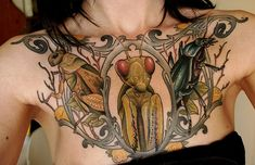unusual chest piece!