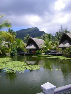 La Pita Resort Huahine, French Polynesia Views from the Lagoon Bungalow