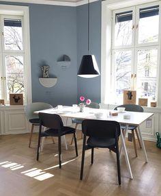 Hay showroom malt i Lady pure color i Linblå