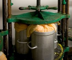 Appleby's - Appleby's Champion Cheese Presses