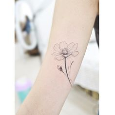 : Cosmos . . #tattooistbanul #tattoo #tattooing #flower #flowertattoo…