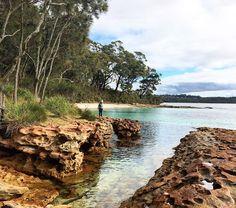Booderee National Park in Pictures #roadcrawl #camping Australia www.parkmyvan.com.au #ParkMyVan #Australia #Travel #RoadTrip #Backpacking #VanHire #CaravanHire