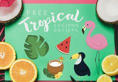 Download Tropical Island Free SVG, PNG & EPS file for your DIY project. Files compatible with Cricut, Cameo Silhouette Studio and other cutting machines.