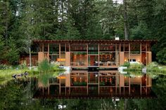 Modern Cabin built above a pond. (Has a diving platform built into the living room.) | Oregon [1362x908] - Cool Houses Pictures And Dream Home Unique Designs, Big, Medium Size And Small House Design Ideas