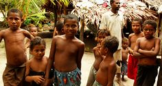 DNA data offer evidence of unknown extinct human relative Melanesians carry genetic clues to hominid not revealed by fossils Alternative News, Alternative Health, Hominid Species, Dna Genetics, Human Dna, Early Humans, Human Evolution, Anthropology, Biology