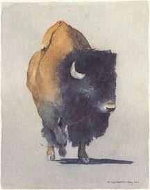 Bison Buffalo Painting, Buffalo Art, Watercolor Animals, Watercolor Paintings, Bison Tattoo, Cow Art, Southwest Art, Wildlife Art, Western Art