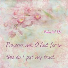 Psalms KJV - Preserve me, O God: for in thee do I put my trust. Psalms Quotes, Bible Verses Quotes, Bible Scriptures, Scripture Art, Art Quotes, Now Faith Is, True Faith, 4th Commandment, Psalm 25