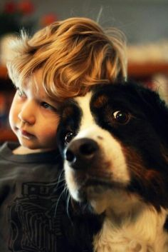 Because, clearly, children and Bernese Mountain dogs don't mix. Dogs And Kids, Animals For Kids, Baby Animals, Dogs And Puppies, Funny Animals, Cute Animals, Doggies, Love My Dog, Puppy Love
