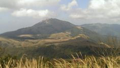 陽明山擎天崗的美景