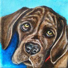 Great Dane puppy, Acrylic painting on canvas by Hina Pet Portraits DM sassosaby@gmail.com