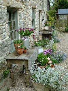 Weve moved the old table here and are bringing our plants & pots near the potting shed. We have to get things organized for winter.....
