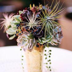 Make a succulent (live) bouquet