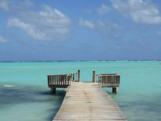 Bonaire, an island municipality of the Netherlands, lies off Venezuela's coast in the southern Caribbean. Its reef-lined coast is protected by Bonaire National Marine Park. Beyond its rich marine life,…
