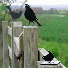bird silhouettes  http://www.worm.co.uk/products/fence-post-protectors