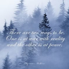 There are two ways to be. One is at war with reality and the other is at peace.  —Byron Katie
