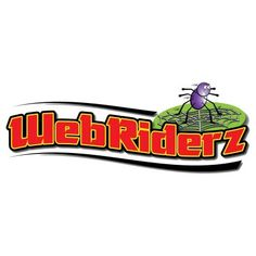 Web Riderz Nest Swing