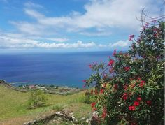Check out my adventure in beautiful St. Kitts!