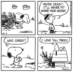 That is so me lol  I love tall trees!