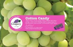 """""""Cotton Candy Grapes""""....These new hybrid grapes taste exactly like the pink spun-sugar treat you loved as a kid at the circus—and we mean exactly. Grapery worked alongside International Fruit Genetics to cross-breed thousands of grape varieties until they discovered one with a cotton candy-like flavor."""