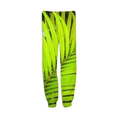 Palm Frond from Print All Over Me