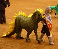 Horse Halloween Costume - just about the most tolerant horse I've ever seen.