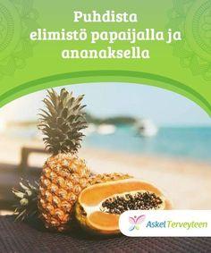 Puhdista elimistö papaijalla ja ananaksella   Elimistöön kertyy myrkkyjä ruoasta, ilmastosta ja kaikkialta mitä kosketamme. Myrkkyjä on hyvä poistaa puhdistuskuurilla, jotta pysyt terveenä pidempään. Wellness, Yoga, Fitness, Pineapple, Fruit, Diets, Ketogenic Diet, Food, Pinecone