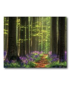 Look at this Green & Purple Enchanted Irish Forest Wrapped Canvas on #zulily today!