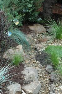 Probably the best article I've come across on creating an Australian 'natural' dry creek bed. Garden Clinic - Bush Garden - Dry Creek Bed garden