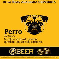 Beer Memes, Beer Humor, Party Rock, Bartender, Words, Funny, Dog, Inspiration, Beer Poster