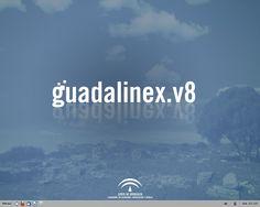 El sistema operativo Guadalinex, con el que hemos creado otra máquina virtual en nuestro  propio PC.
