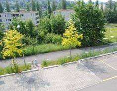 """Résultat de recherche d'images pour """"landscaping Parking pavement"""""""
