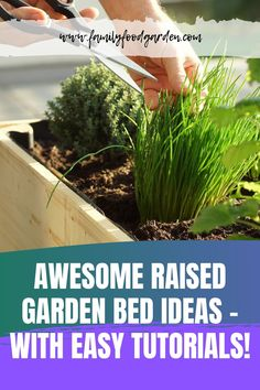 Sharing these awesome raised garden bed ideas that will surely look good on your garden. On this pin you will find the materials you can use for raised garden beds lots of inspiration and easy DIY tutorials! Container Gardening, Gardening Tips, Indoor Gardening, Urban Gardening, Flower Gardening, Vegetable Gardening, Indoor Plants, Raised Garden Bed Plans, Raised Bed