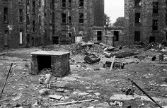 Glasgow, the bad old days; tenement back court Glasgow City, The Gorbals, Hanoverian Kings, London University, Slums, Historical Photos, Great Britain, Urban Decay, Old Photos