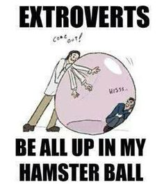 extroverts vs. introvert