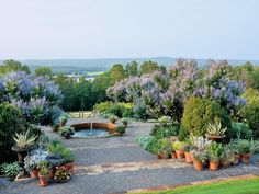 Chaste trees frame a view at P. Allen Smith's Moss Mountain Farm in Arkansas. | SouthernLiving