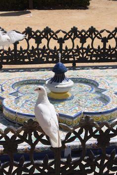 Parque Maria Luisa, Sevilla