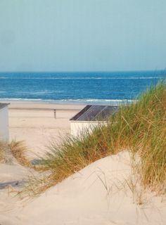 Texel de Koog I love the beach
