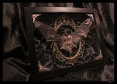 Gothic Taxidermy Bat Goth Curio Black Antique by SinisterVanity, $125.00 Wow, this is gorgeous!!