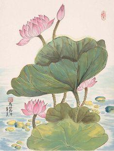 LOTUS LEAF PICTURES, PICS, IMAGES AND ... Lotus Pond, Lotus Leaves, Chrysanthemum, Blackwork, Art Gallery, Art Deco, Concept, Contemporary, Floral