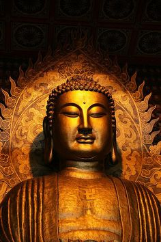 """""""Hard to hold down, nimble, alighting wherever it likes: the mind. The mind well-tamed, brings ease. So hard to see, so very, very subtle, alighting wherever it likes: the mind. The wise should guard it. The mind protected brings ease."""" - Dhammapada Buddha"""