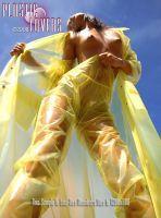 wet-yellow_761fa52c.jpg par steff