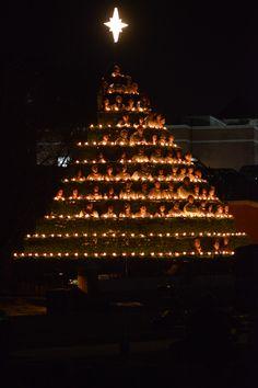 singing christmas tree christmas trees xmas trees christmas tree xmas tree - Singing Christmas Tree Lights