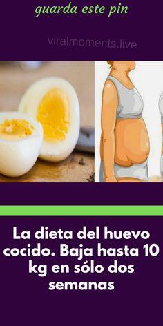 Si quieres resultados rápidos en la pérdida de peso, la dieta del huevo es perfecta para ti. Health Coach, Cantaloupe, Eggs, Fruit, Breakfast, Healthy, Food, Makeup, Gourmet