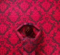 Siren in the Sea of Roses, 2011 Cecilia Paredes Disappears Into Wallpaper