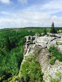 Dolly Sods, West Virginia.  Taken by The Wandering Aengus.