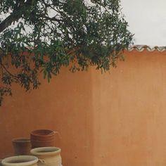 1000 images about architecture interiors mediterranean - Tollens peinture a la chaux ...