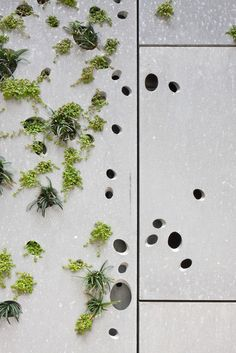 "Detail of the Perforated Metal ""Green"" Skin used for the San Telmo Museum Extension, Nieto Soberano"